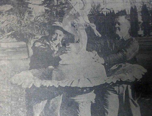 Cupid Repaired, 1963